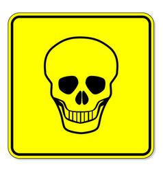 skull warning sign vector image