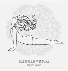 cute girl doing yoga yoga poses and asanas in vector image vector image