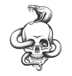 Snake and Skull Engraving vector image vector image