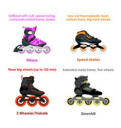 inline skate types - set i vector image