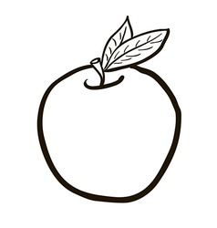 black and white freehand drawn cartoon apple vector image