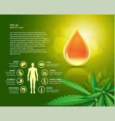 cbd oil uses vector image