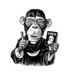 monkeys in a t-shirt with theory evolution vector image