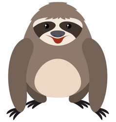 sloth on white background vector image