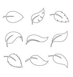 leaves thin icon set vector image vector image
