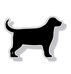dog animal pet mascot isolated icon vector image