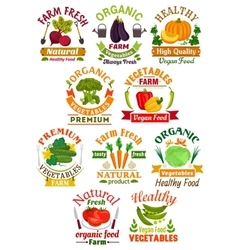 Farm fresh vegetables badge set for food design vector image