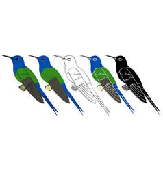 Hummingbird colibri bird in profile view vector