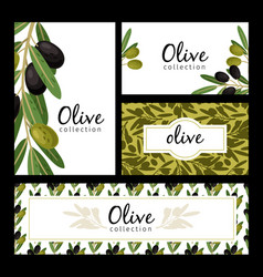 olive leaves and berries cards vector image