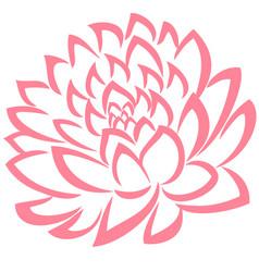 Rose color flower leaves vector