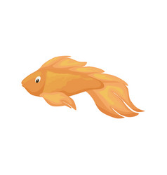 sea fish aquarium cartoon animal character vector image