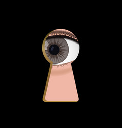 brown eyes in the keyhole vector image