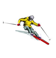 color line sketch skier vector image vector image