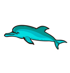 a funny dolphin jumping vector image