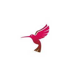 creative red hummingbird logo vector image
