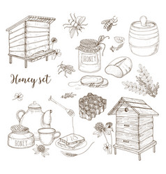 Honey production beekeeping or apiculture set vector