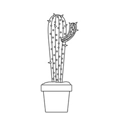 monochrome silhouette with cactus with small vector image