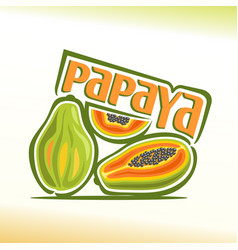 papaya still life vector image