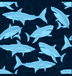 shark pattern nautical ocean sea scare big fish vector image