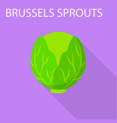 brussels sprouts icon flat style vector image