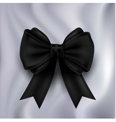 ribbon bow vector image