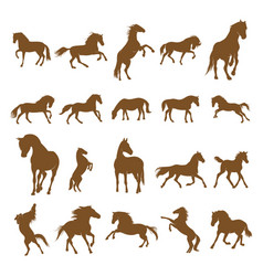 Set horse logo design icon symbol horse horse vector