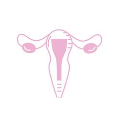 silhouette uterus fallopian tubes anatomy female vector image