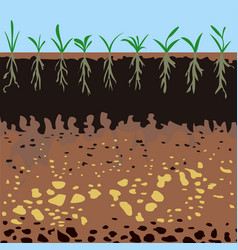 soil layers with green plants vector image