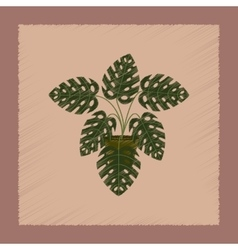flat shading style plant Monstera vector image
