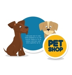 pet shop template and dog cat vector image