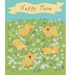 Happy pets chow-chow on the blossoming field vector image