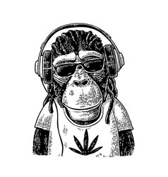 Monkey hipster wirh dreadlocks in headphones vector