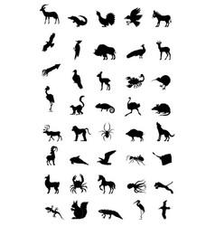 world of animal vector image