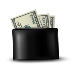 Black leather wallet with money vector image