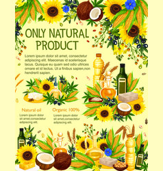 Cooking oil bottle with olives corn sunflower vector