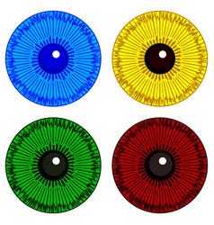 eye iris set vector image