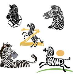 five funny zebra set vector image