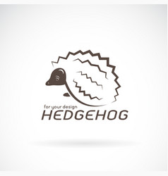 hedgehog design on white background wild animals vector image