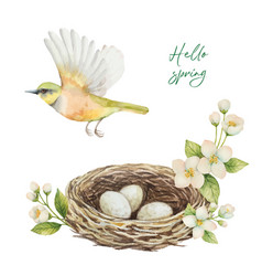 Watercolor wreath with bird nest with eggs vector