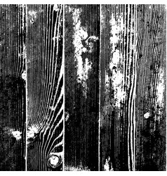 wood planks texture vector image