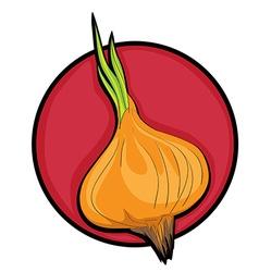onion clip art vector image vector image