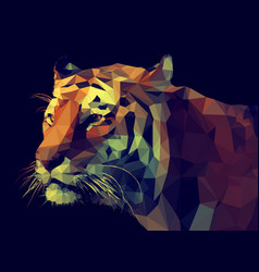 low poly tiger vector image