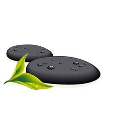 black pebbles vector image