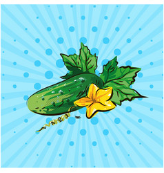 cucumber with yellow flower on a blue background vector image