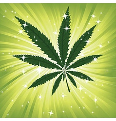 Green hemp floral inspiration background vector image