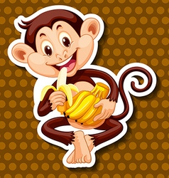 Monkey eating banana alone vector image vector image
