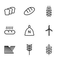9 grain icons vector image