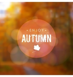 Autumn fall blurred background with maple leaf and vector image vector image