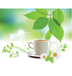 cap of tea vector image