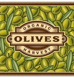 Retro Olive Harvest Label vector image